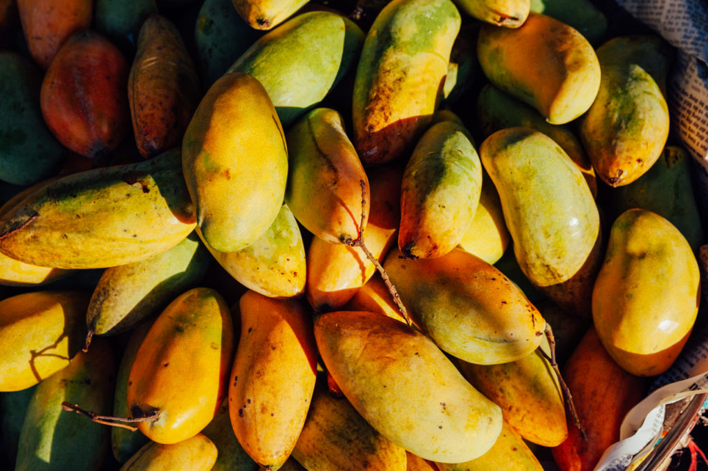 Fruits of Vietnam: Mango (Xoai)