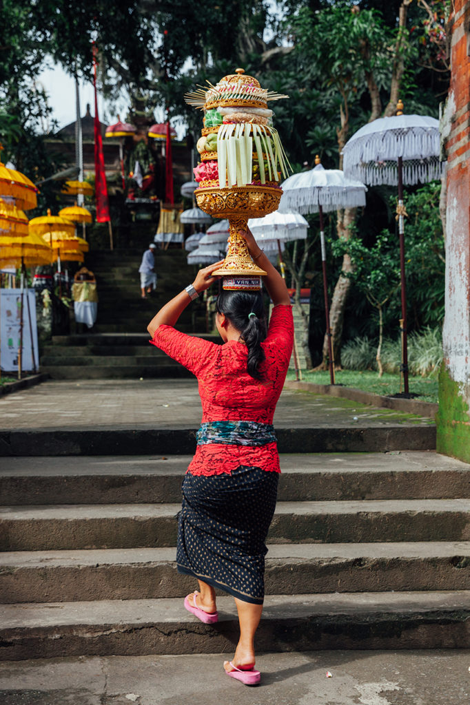The Balinese woman carries ceremonial offerings on her head, Ubud, Bali, Indonesia