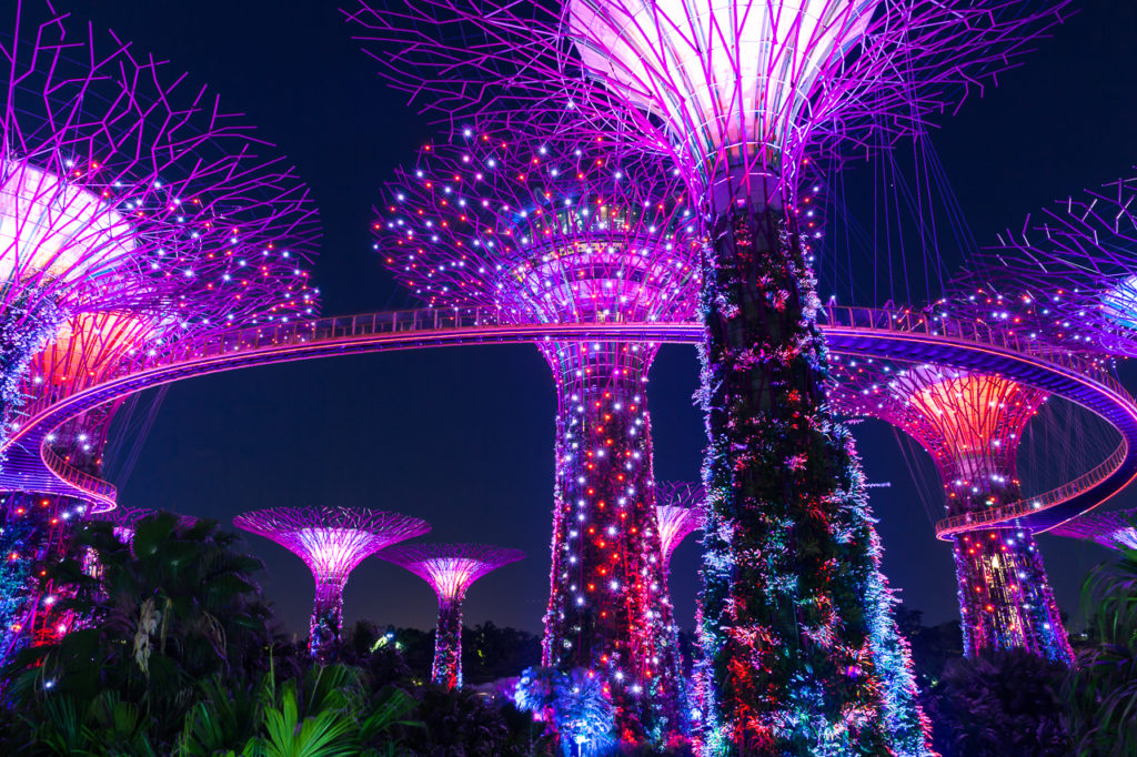 Garden Rhapsody show at Supertree grove, Singapore
