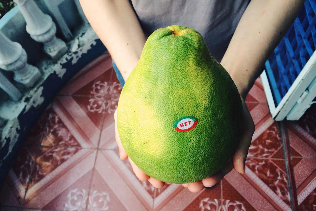 Fruits of Vietnam: Pamelo (Buoi)
