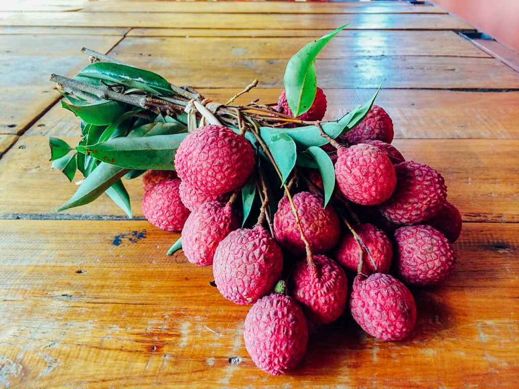 Fruits of Vietnam: Lychee (Vai)