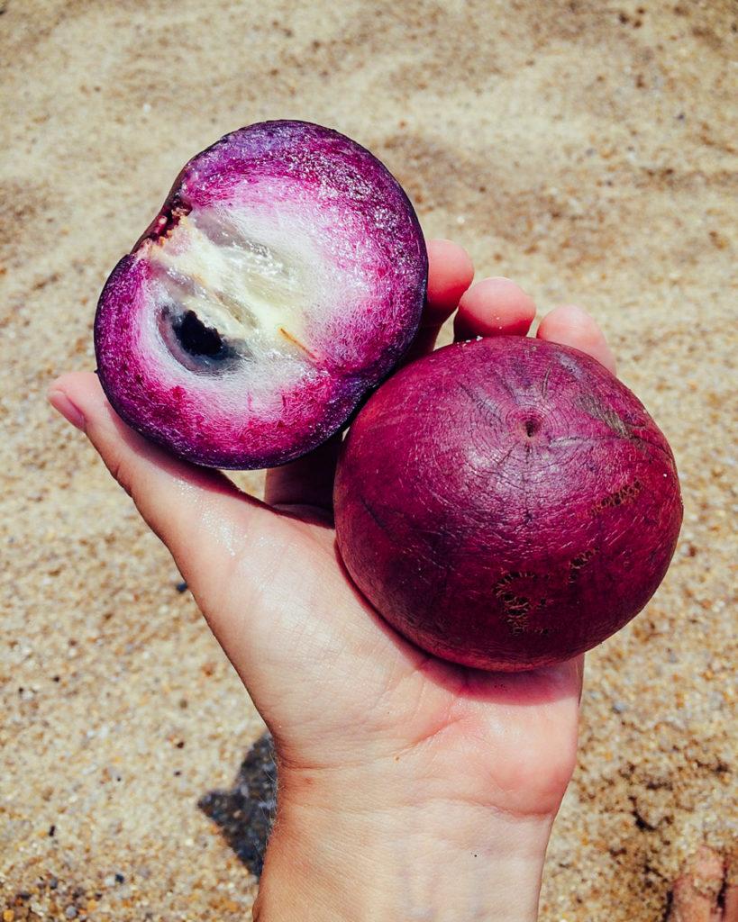 Fruits of Vietnam: Star Apple (Vu Sua)