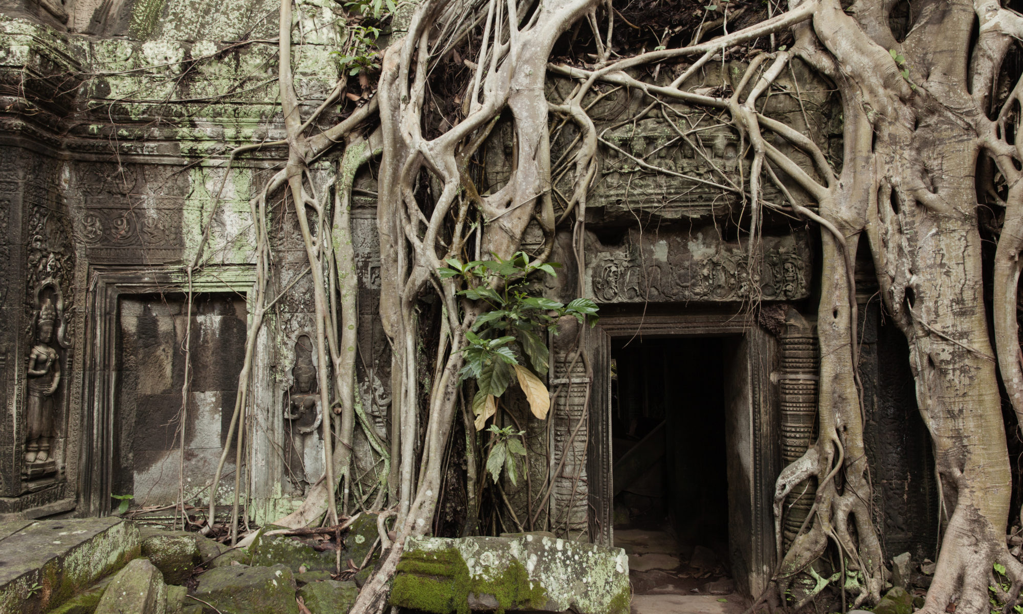 Ancient ruins hidden in the jungle of Cambodia